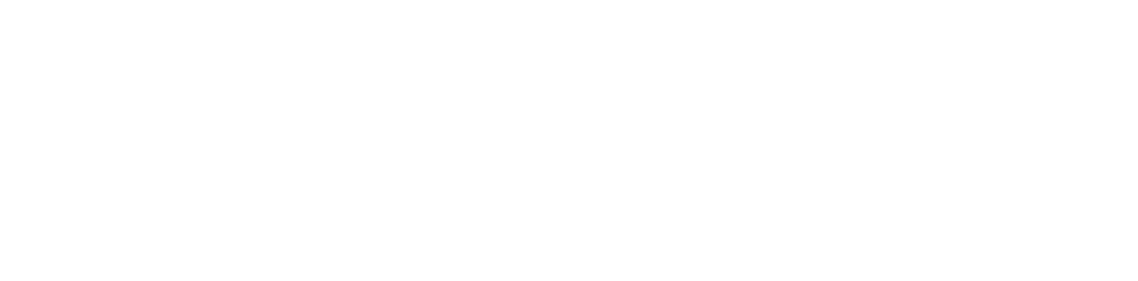 BONAPEDA Enterprises LLC